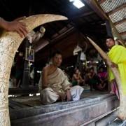 Karen Tribe Lersi Hermit